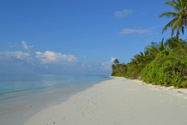 Dhigurah Strand Male - TME Retreats