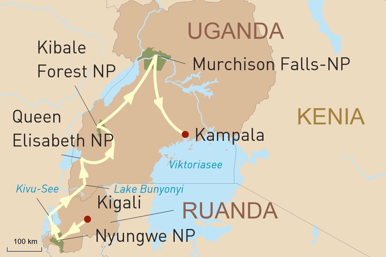 Uganda & Ruanda: Schimpansen, Gorillas und Baumlöwen im Naturparadies