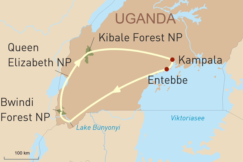 Uganda Reise - Auf Augenhöhe mit den Berggorillas